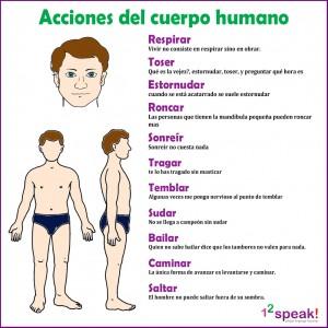 acciones-del-cuerpo-humano