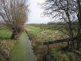 Glastonbury_lake_village