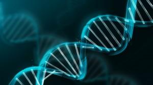 DNA mugshots