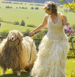 wedding-sheep