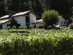 Winery1_small