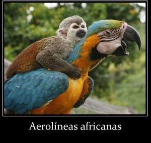 aerolineas-africanas