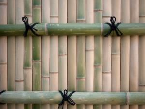 bambooscreen-kyoto1