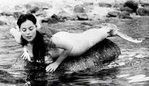 mermaid of tiburon