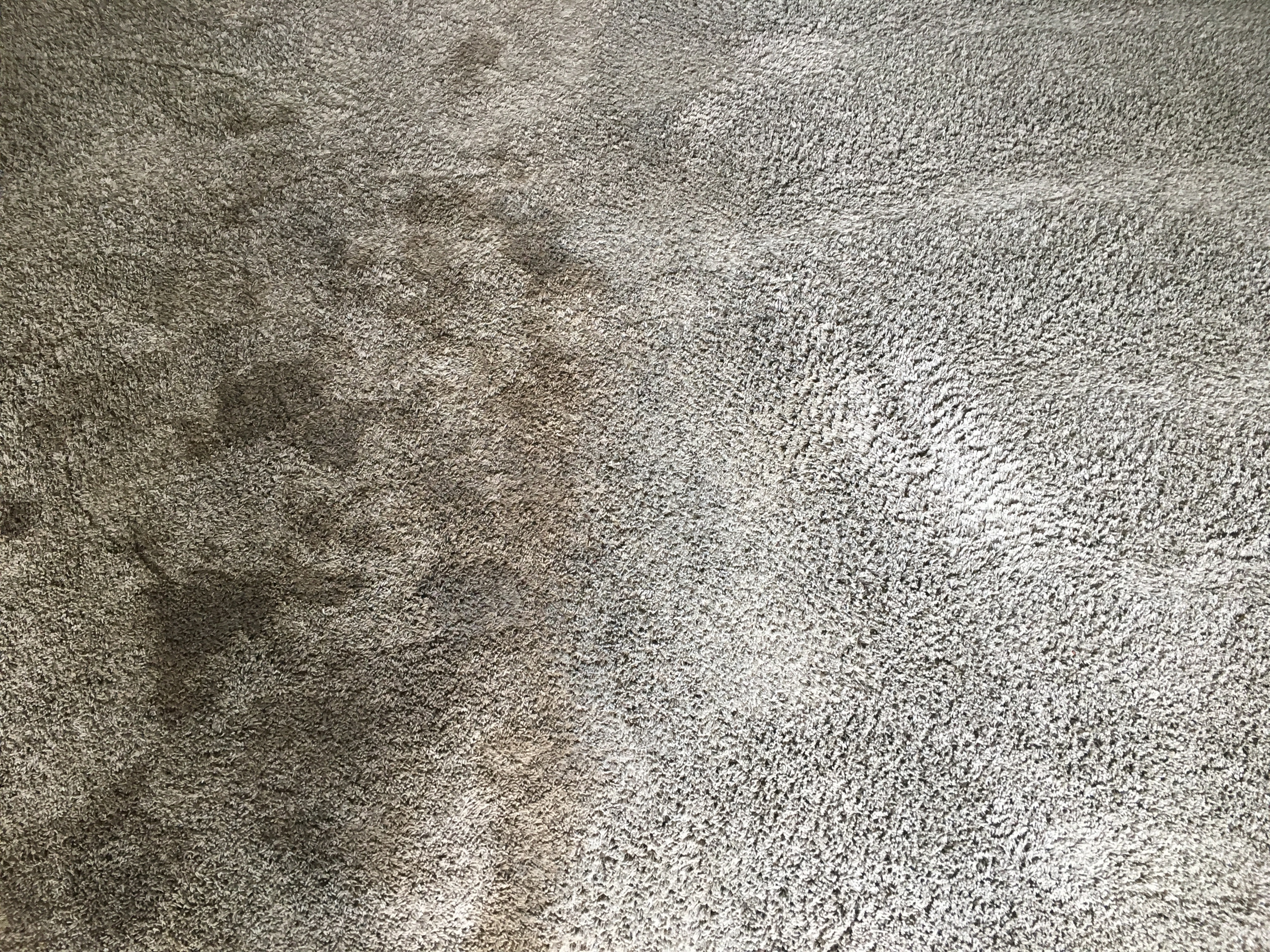 Customer's carpet before and after