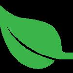 nutrend-logo-leaf-color