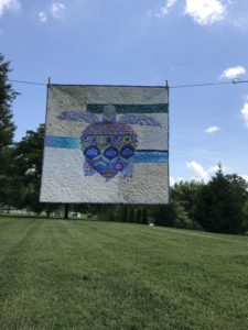 Image of Sea Turtle Quilt on Clothesline