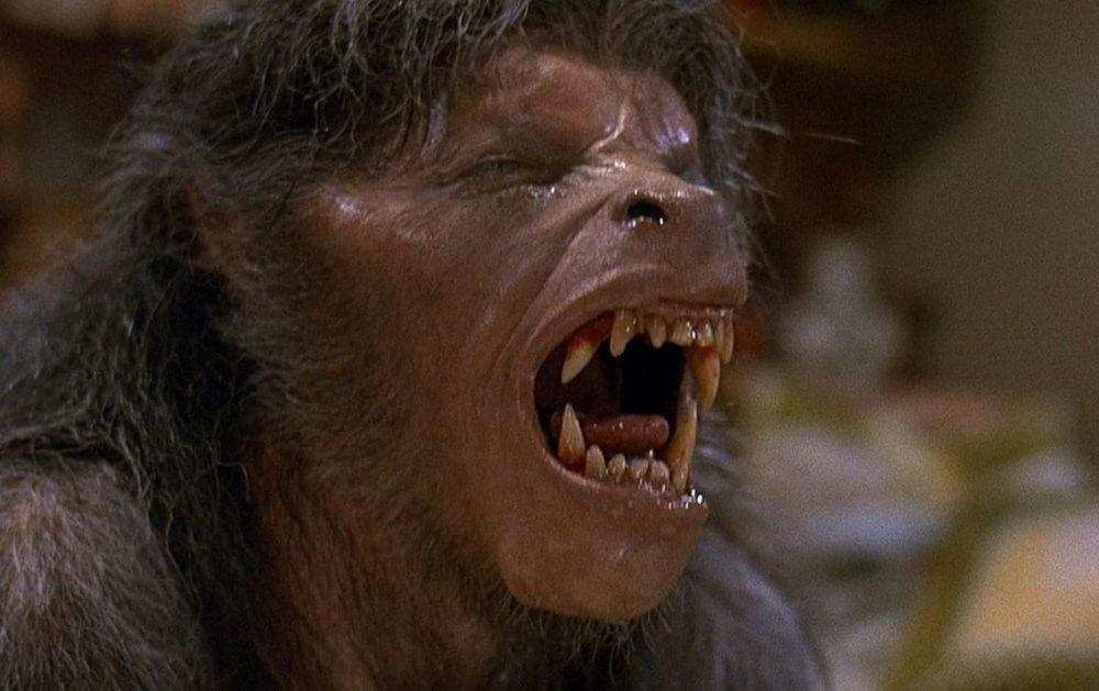 An American Werewolf in London [1981]
