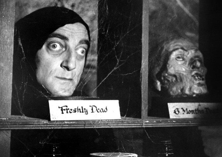 Young Frankenstein [1974]