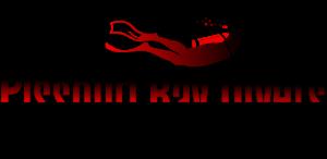 pissouri-bay-divers-logo