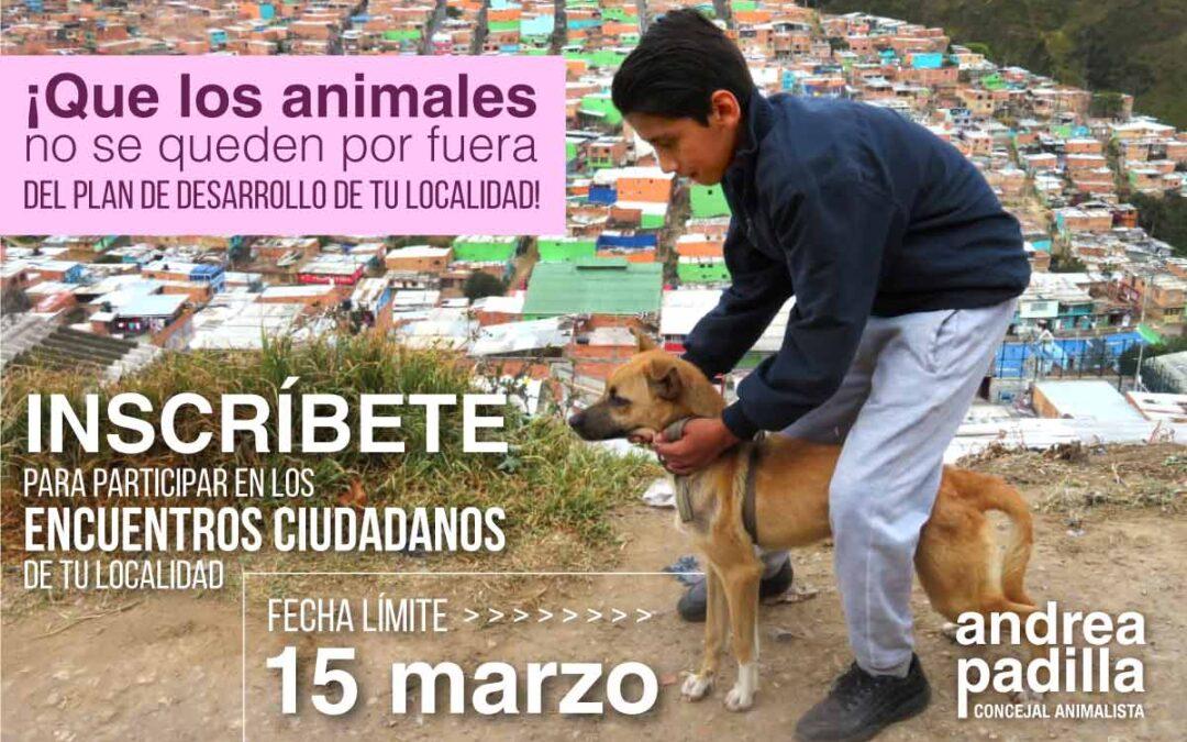 ¡Que los animales no se queden por fuera del Plan de Desarrollo de tu localidad!