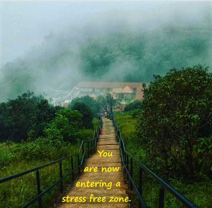 Nature pic Stress Free Zone for mental health