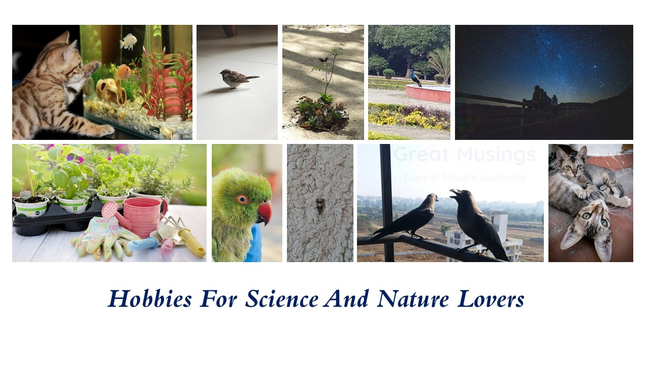 Pics depicting hobbies for science and nature lovers; birds and animals pics.