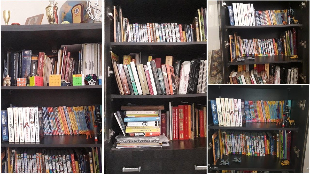 Collection of books for reading