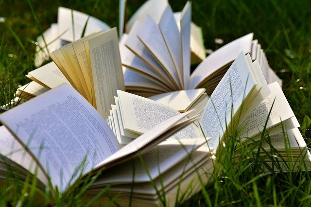 Read more about the article Reading: Why Is It Important For Everyone?