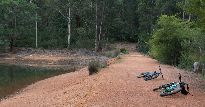 Cycle-in-the-fores-Donnelly-River