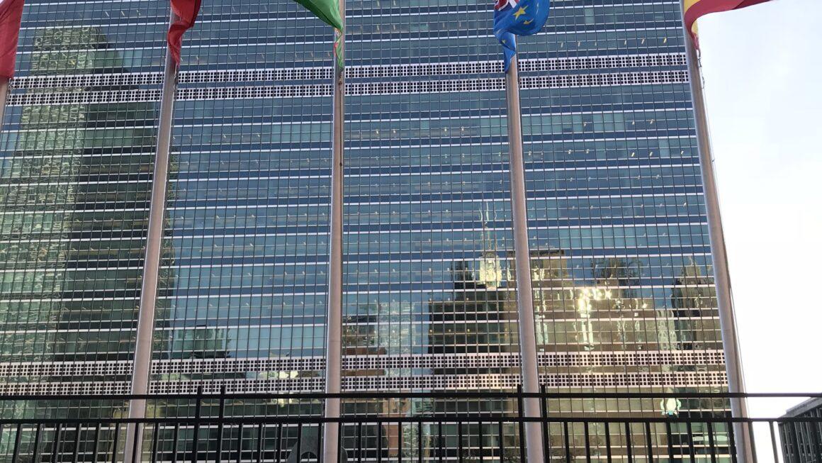 Leis pelo Mundo - ONU