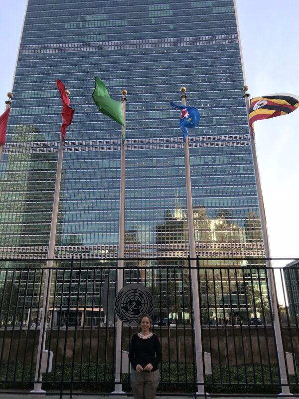 A ESTRUTURA DA ONU NO CONTEXTO MUNDIAL