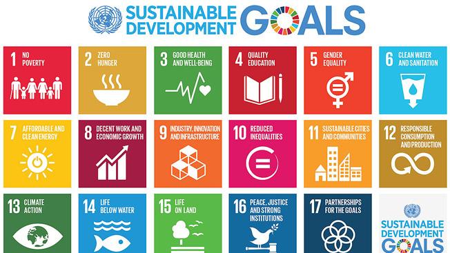 Quais são os Objetivos de Desenvolvimento Sustentável da ONU?