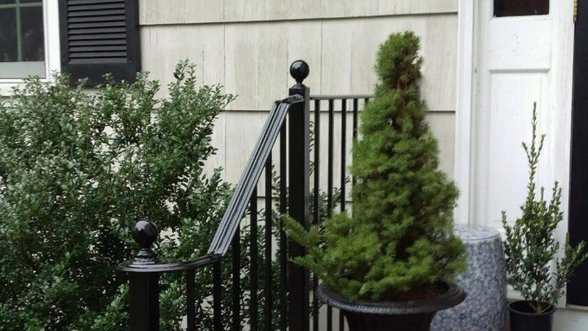 E56 Iron Railing with Lateral Scroll