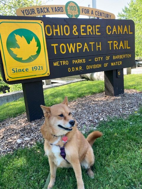 walking trails towpath