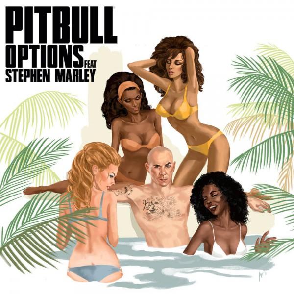 Pitbull ft Stephen Marley 'Options'