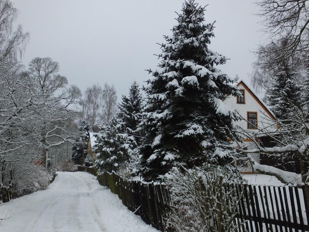Снег. Снег. Чехия. Нова Виска.