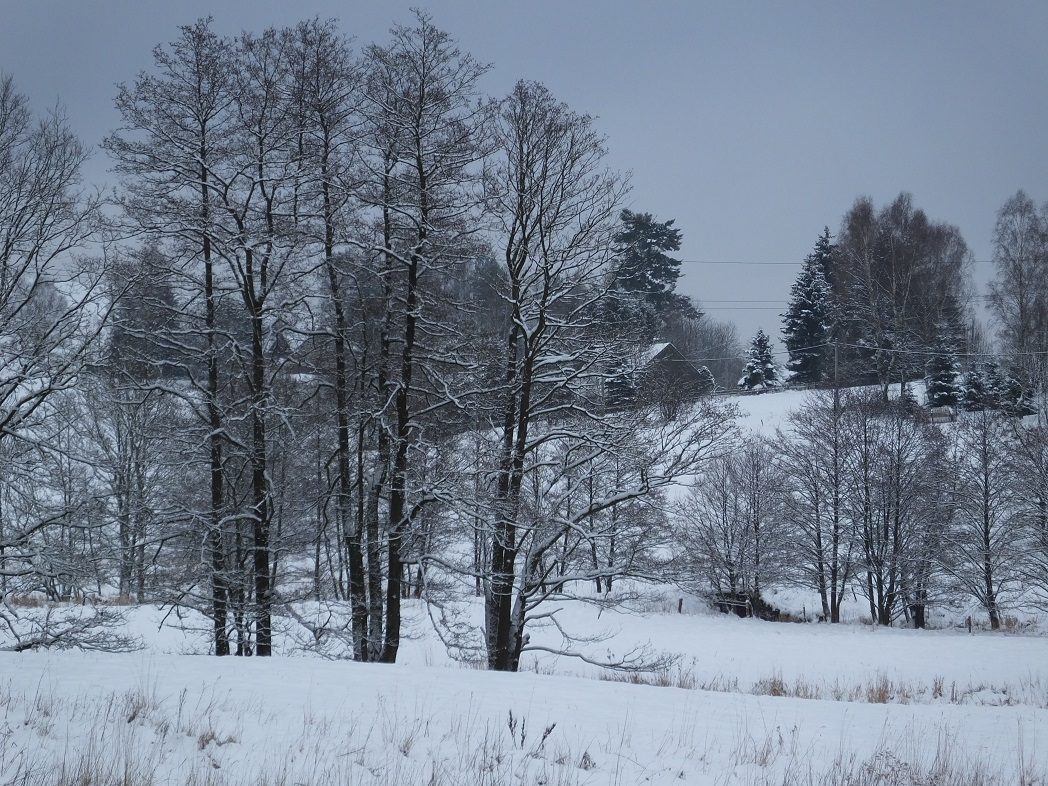 Прогулки зимой.