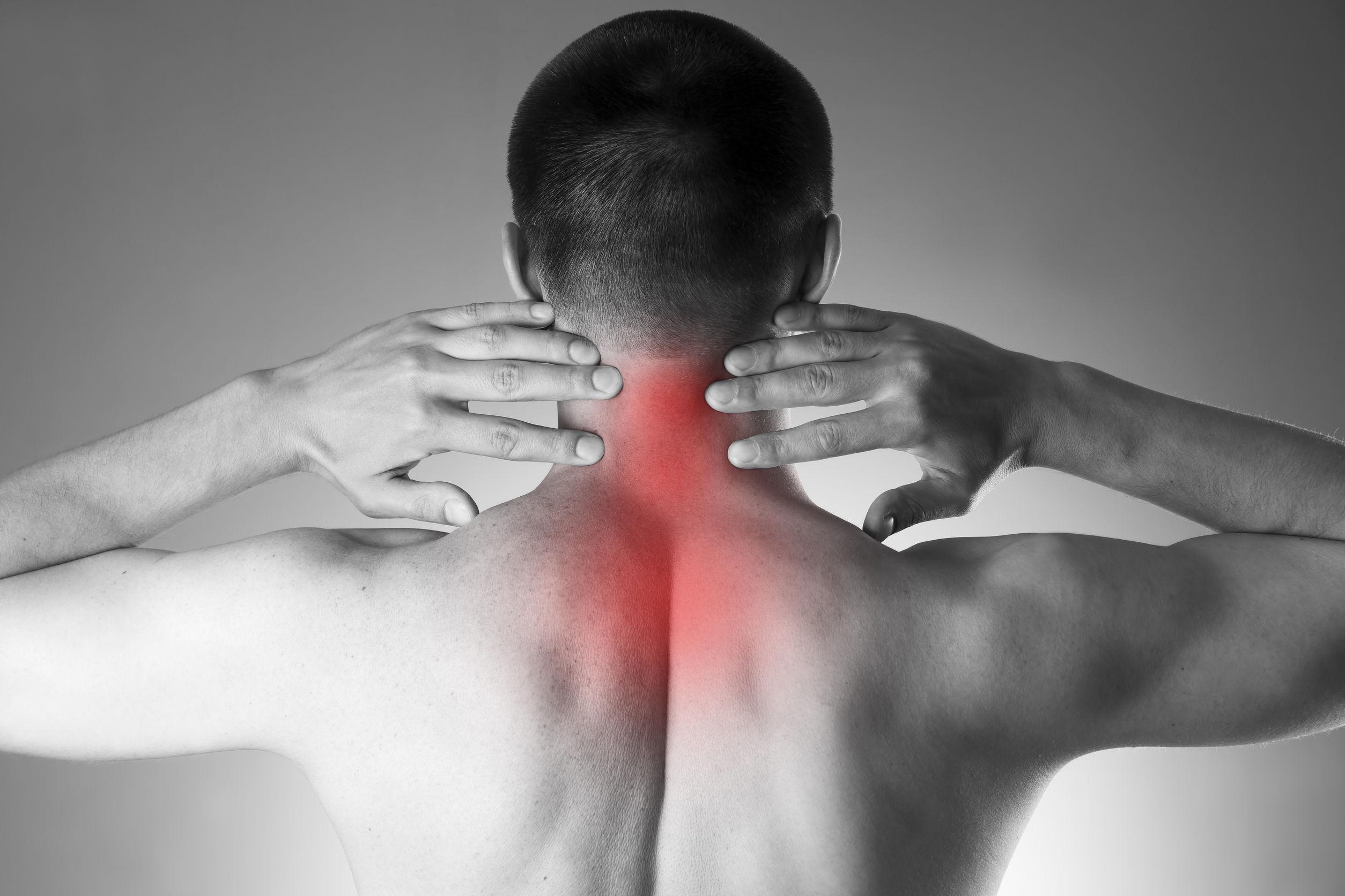 Sinicropi Cervical Spine