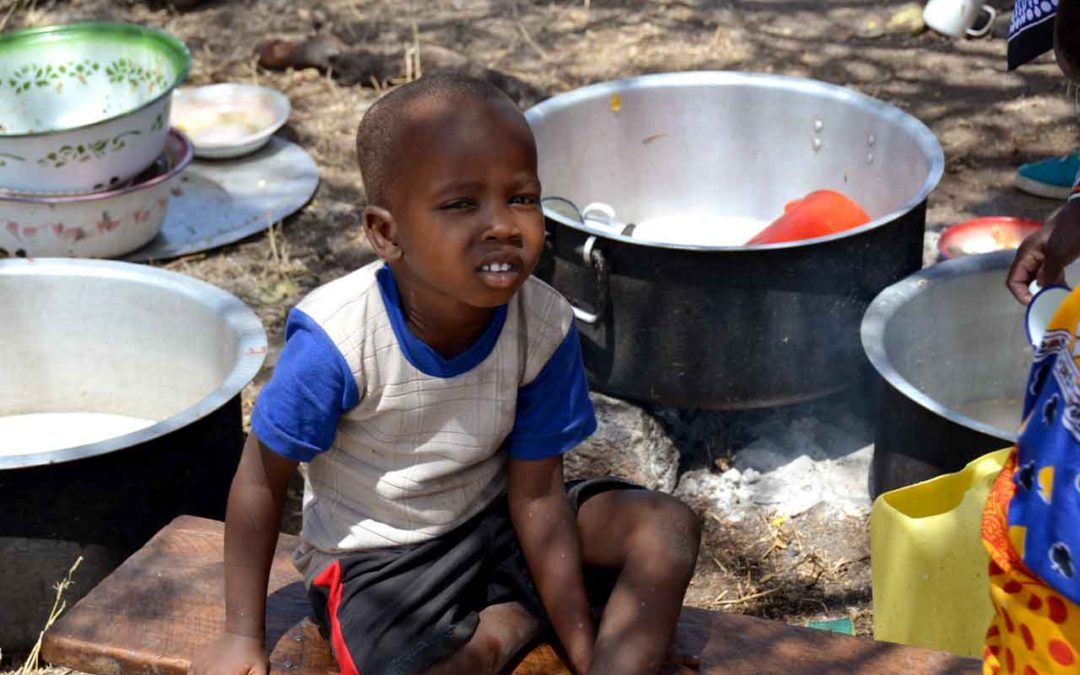 Student Thinks Sky Is the Limit with Solar Cooker Venture