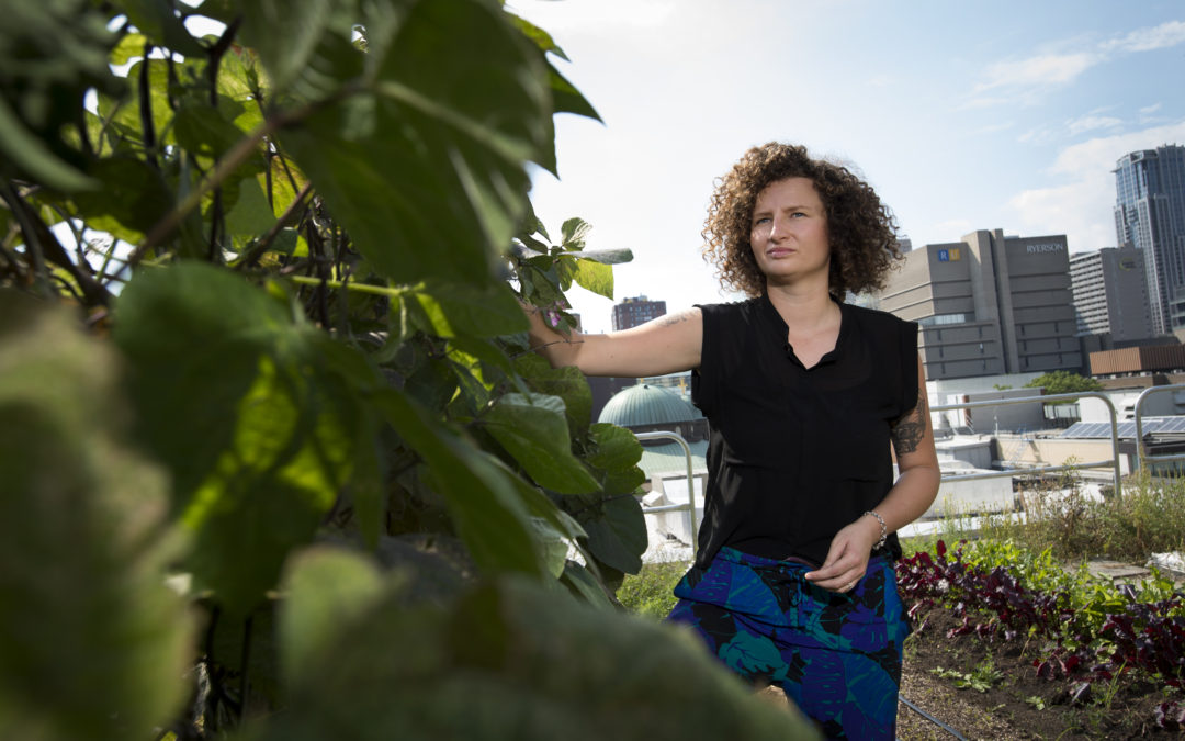 Student Strives to Bring Soul to the Brownfields of Toronto