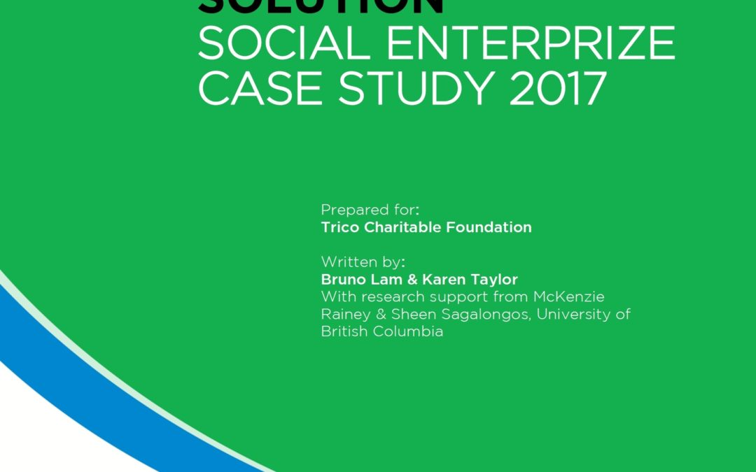 The Cleaning Solution: Social EnterPrize Case Study
