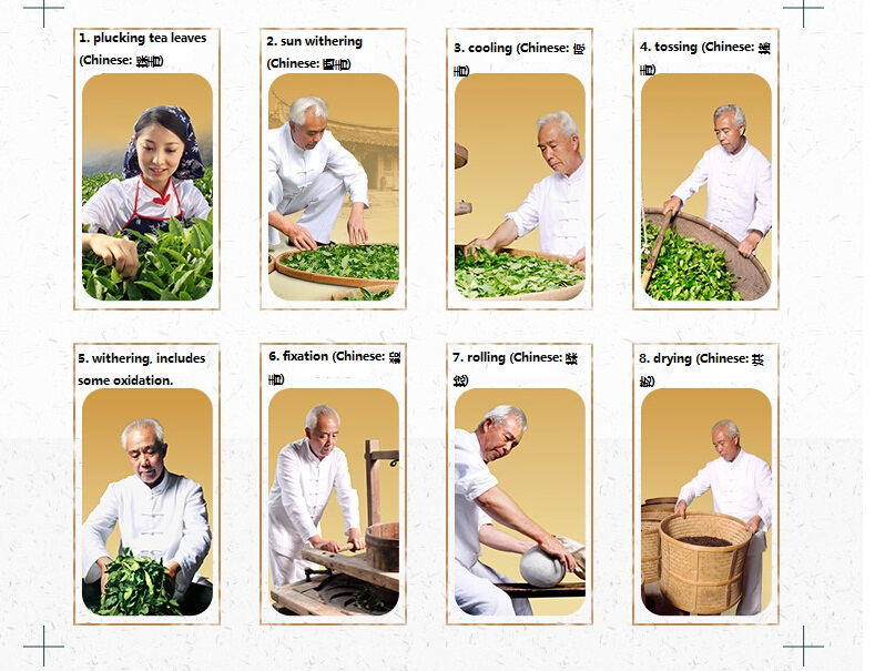 The processing of Tieguanyin tea