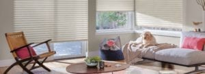 cellular roller window shades