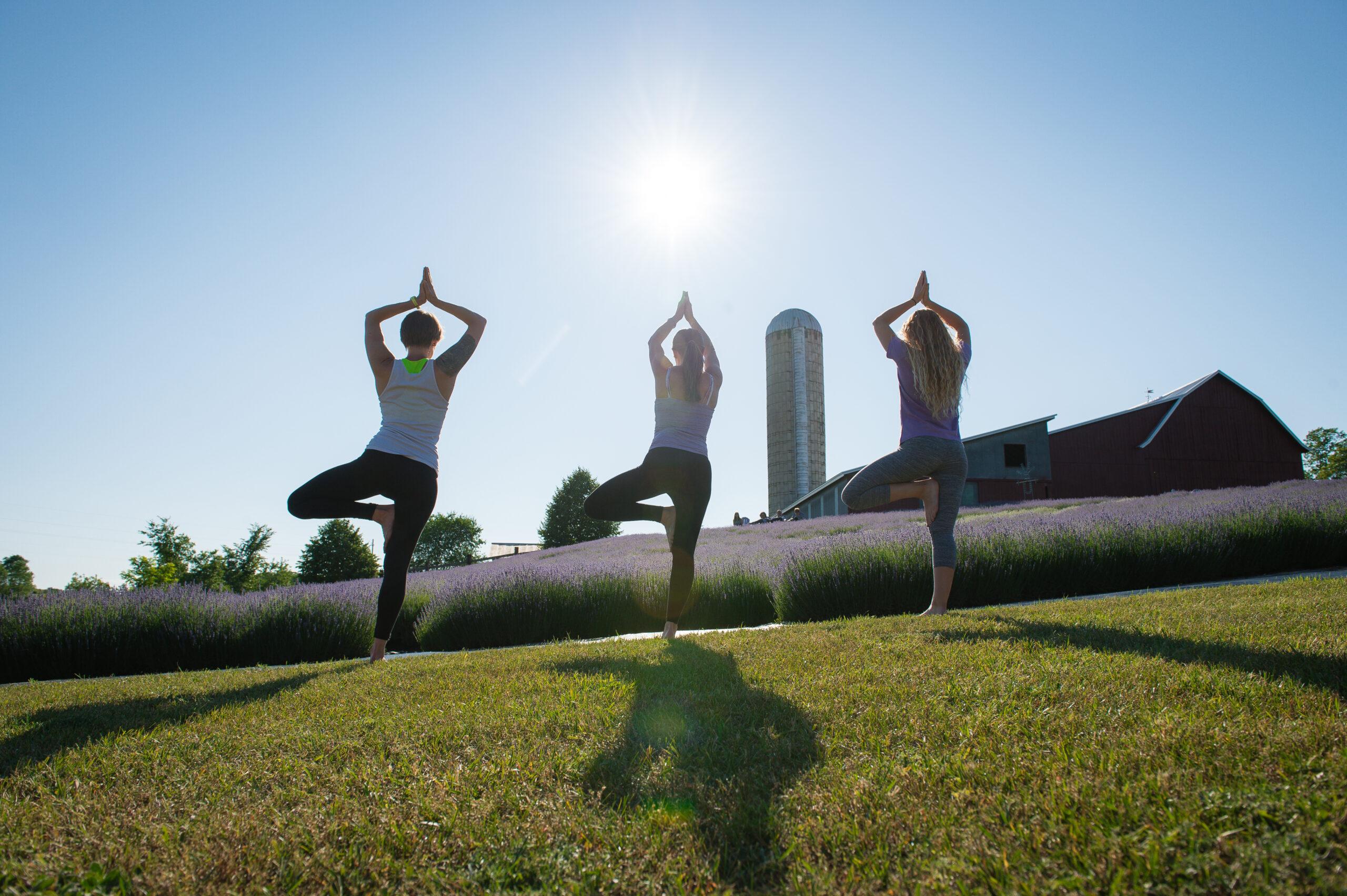 Yoga in Bloom