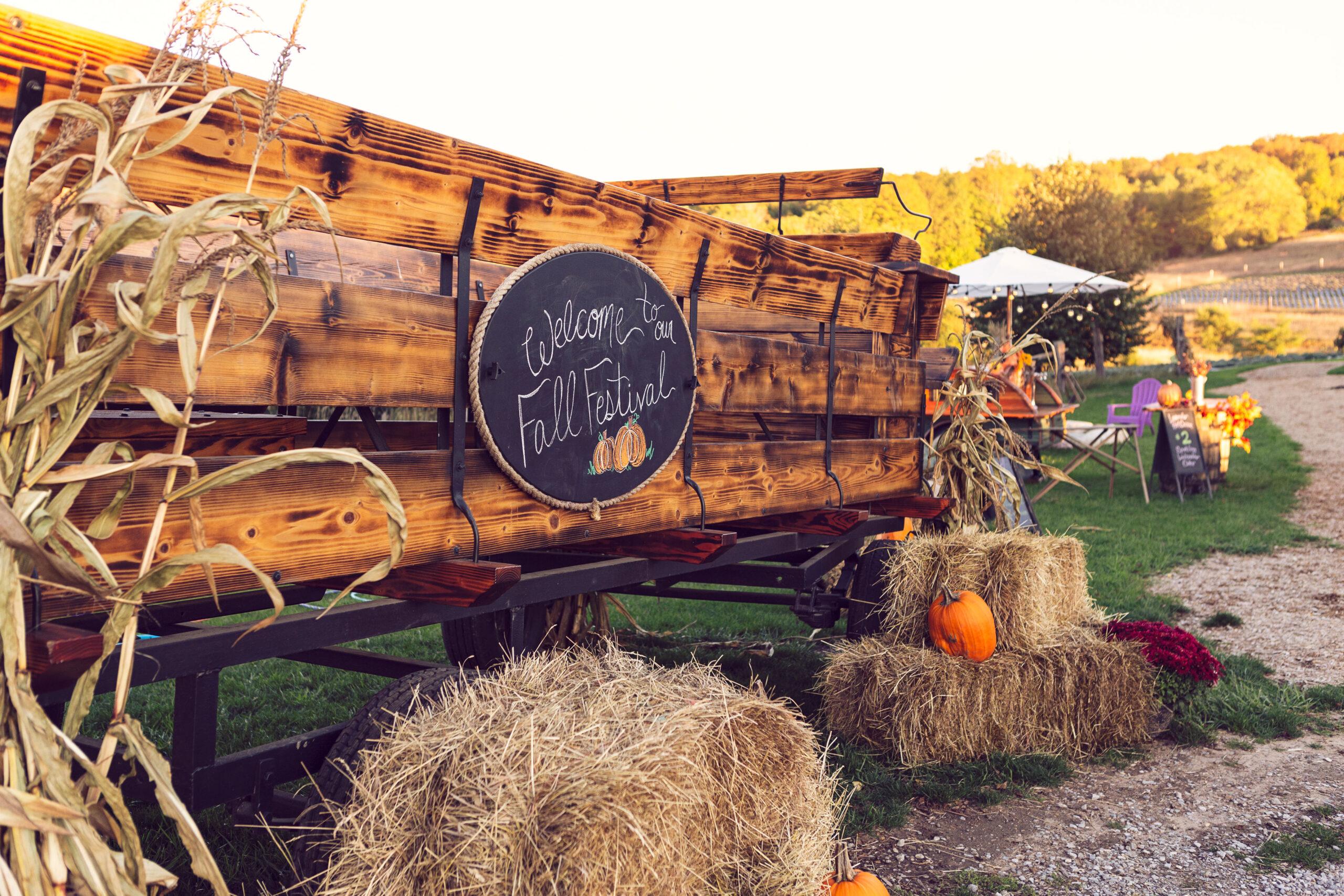 Fall at the Farm