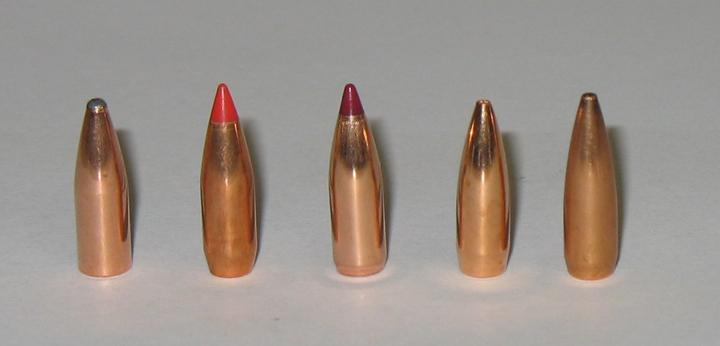 20 Caliber Bullets
