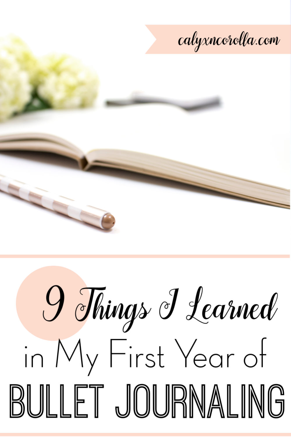 9 Things I Learned in My First Year of Bullet Journaling   Calyx and Corolla