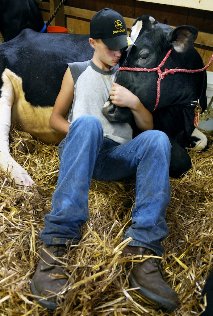 A boy and his cow at the Lake County Fair