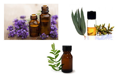 An Essential All Purpose Made from Essential Oils
