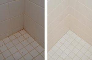 Pink-Mold-Shower.1668555