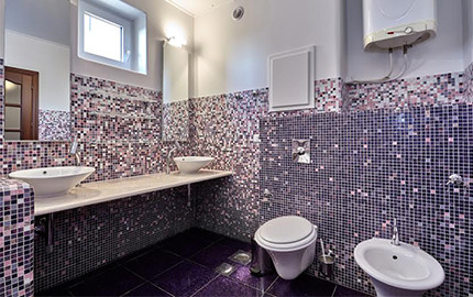 Pink Mold Shower