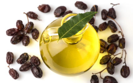 The many uses of Neem Oil