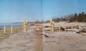 """Using 8"""" cedar posts to enhance the existing nautical theme at the waters edge."""