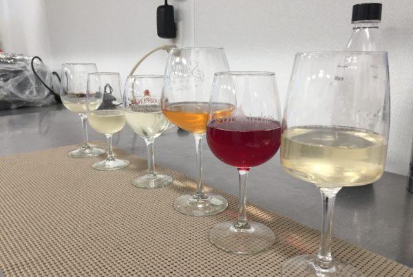 Wine Tasting Knowledge
