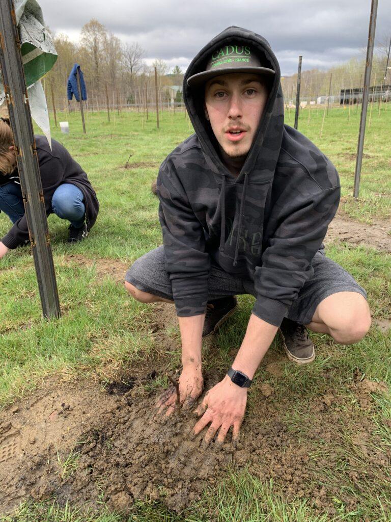 James Planting Vines