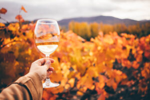 Wine on the Veranda