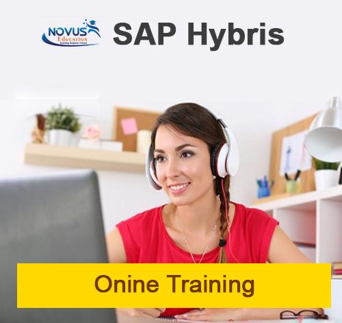 SAP Hybris Commerce Course Content