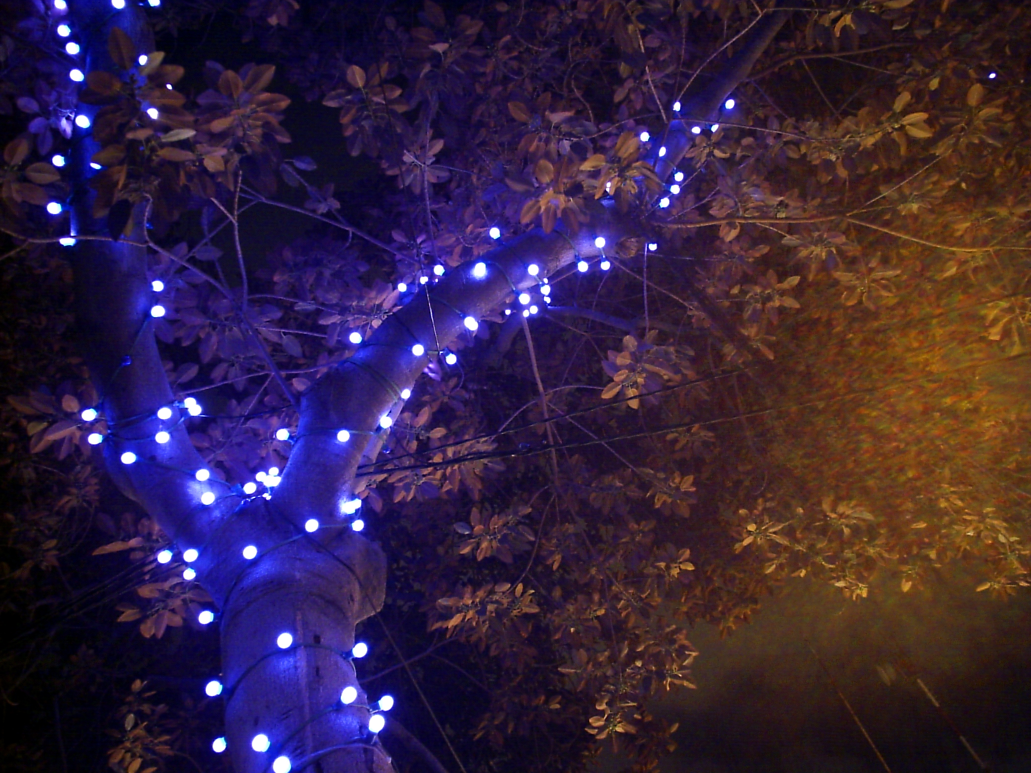Darkness, Holiday Blues, and What it's About