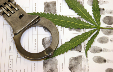John Breakfield is an experienced criminal Defense Attorney and is dedicated to protecting your rights. If you have been charged with possession of marijuana we can help. Please call Breakfield & Associates, Attorneys 770-783-5296. https://gainesvillegalawyer.com